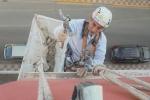 picado-y-reparación-de-cornisa-almussafes-0090218
