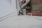 Aplicación de primera capa de pintura, en este caso de paredes sin tratamiento damos una primera capa de emulsión fijadora, para un acabado de calidad.
